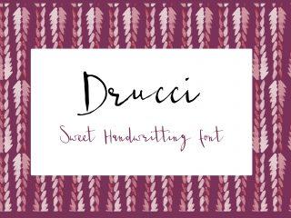 Drucci